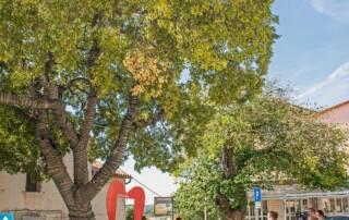 Hrvatsko-stablo-2020-godine_press10